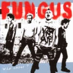 Who cares? FUNGUS
